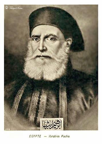 ابراهيم باشا (سلسلة اسرة محمد